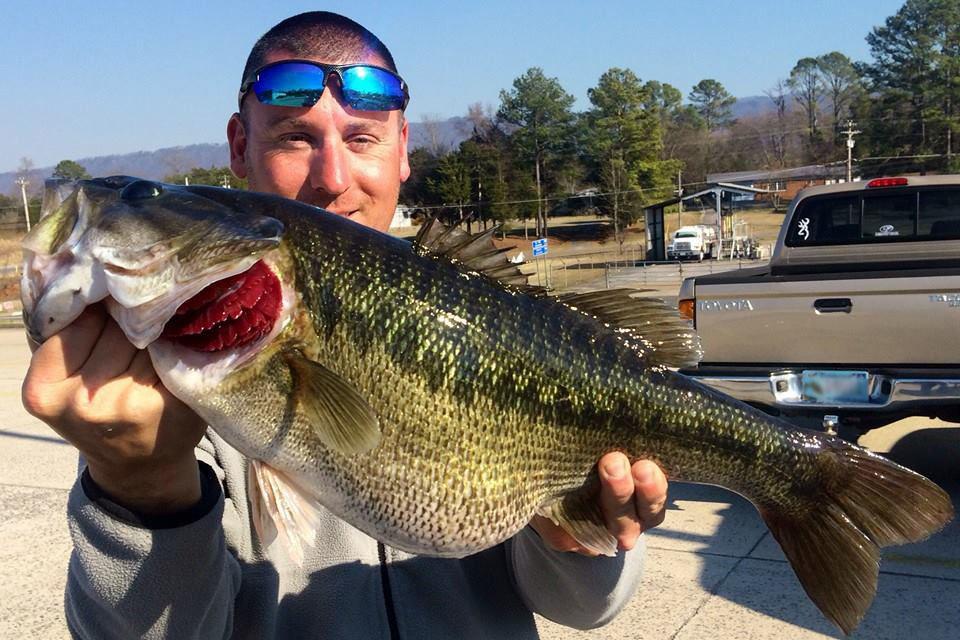 Two new state record bass one from chickamauga for Chickamauga lake fishing