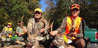 deer buck harvest