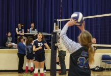 DCS Volleyball