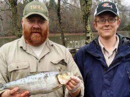 Skipjack Record Fish