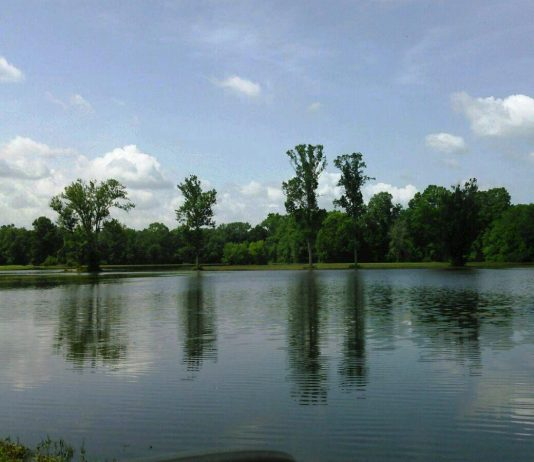 Candies Creek WMA TWRA