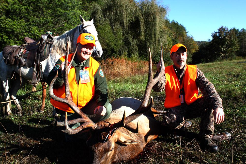 Elk Killed Harvest