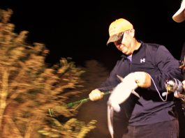 Bowfishing Catfish