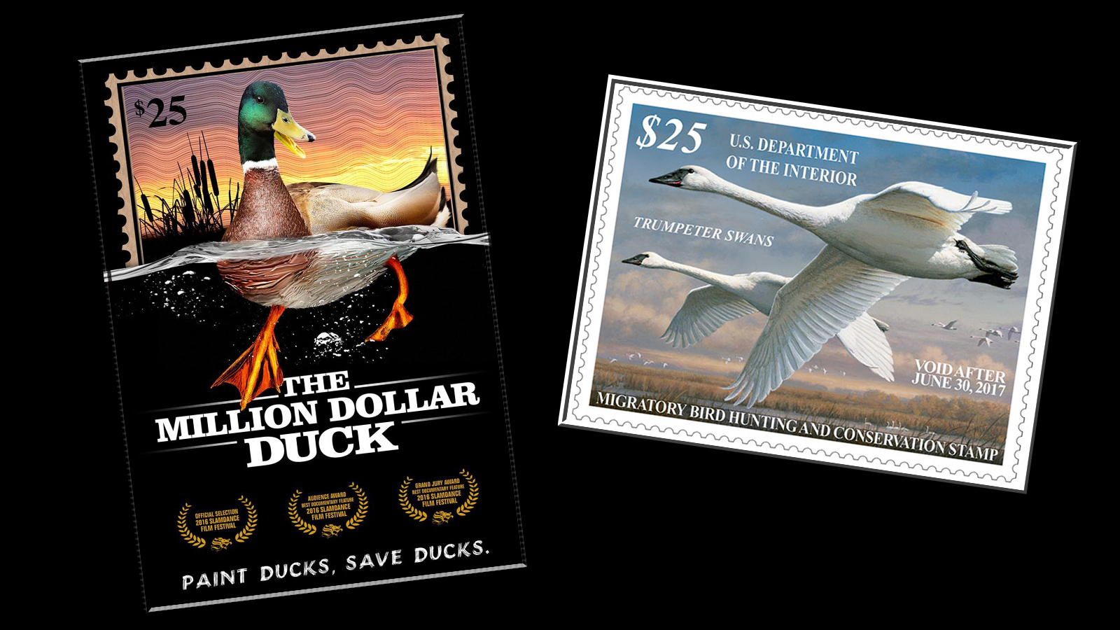 In Music You Have The Grammys If Youre An Actor Its Oscars A Wildlife Artist Winning Federal Duck Stamp Contest