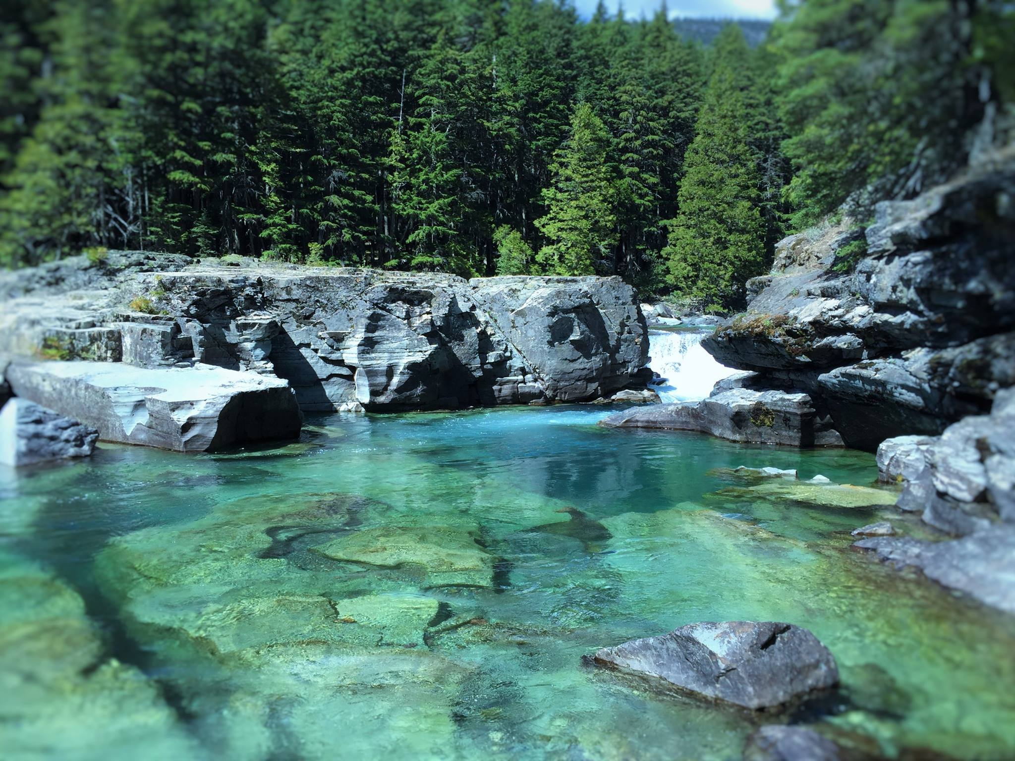 Area anglers experience montana 39 trip of a lifetime 39 for Fishing in glacier national park