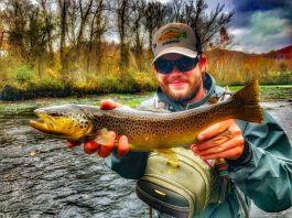Mason Sims Brown Trout