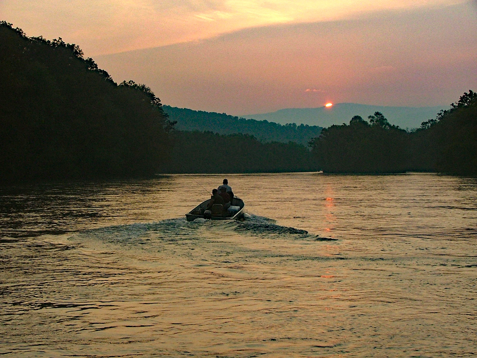 Hiwassee angler adds a gold medal guide for Clinch river fishing