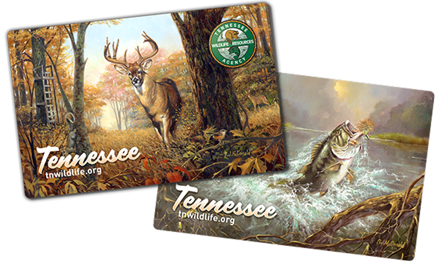 2018 2019 tennessee hunting fishing licenses on sale for Tennessee fish and wildlife