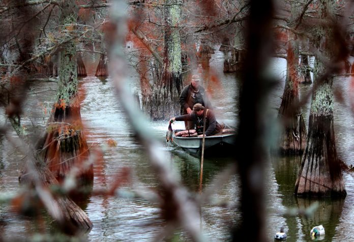 Auburn offers new degree in wildlife enterprise management for Fish and wildlife management degree