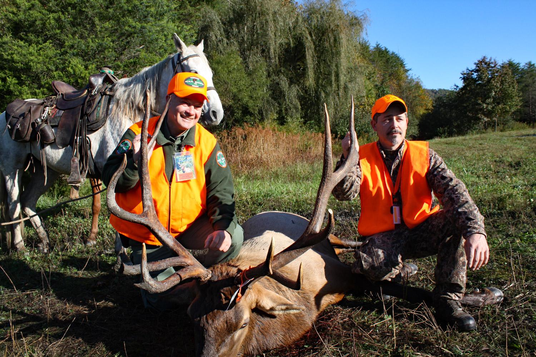 Tennessee Elk Hunting Permit Raffle Raises $77K to Date