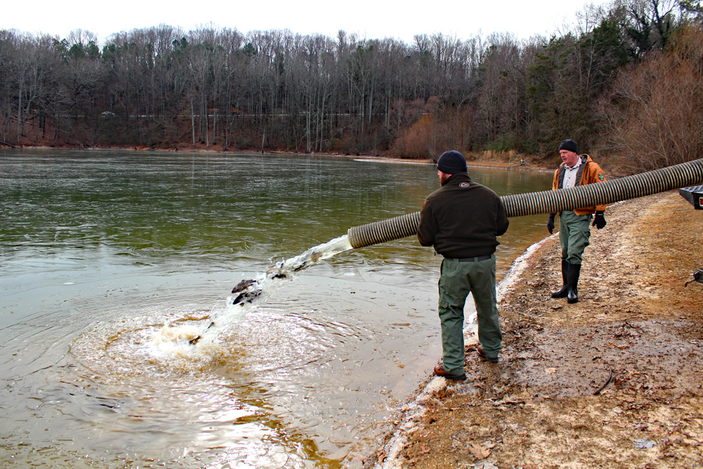 Winter Trout Stocking Schedule Announced