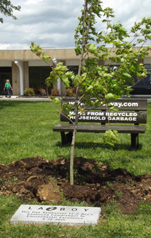 Symbolic tree represents La-Z-Boy's commitment to produce zero waste. (photo submitted)