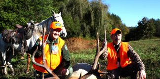 Elk Killed Harvest