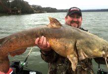 flathead catfish clint bailey