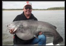 Bill Dance Catfish