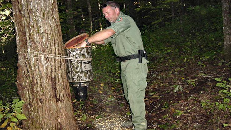 CWD Brings New Variable to Deer Baiting Debate